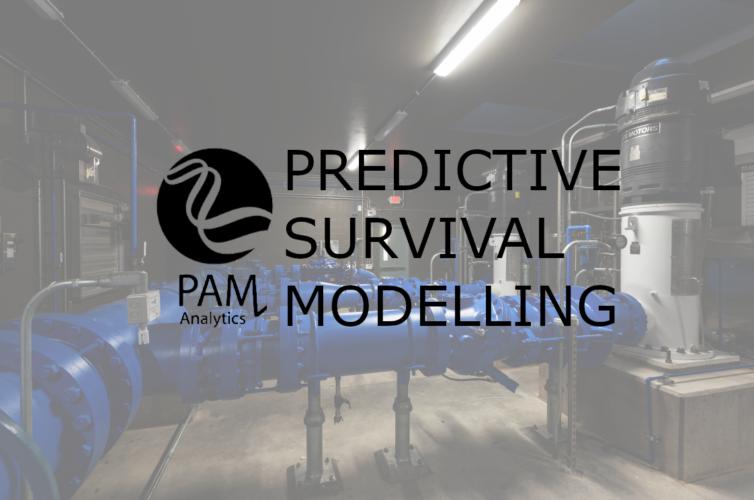 Asset Survival Modelling