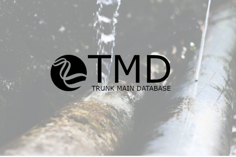 Trunk Main Database